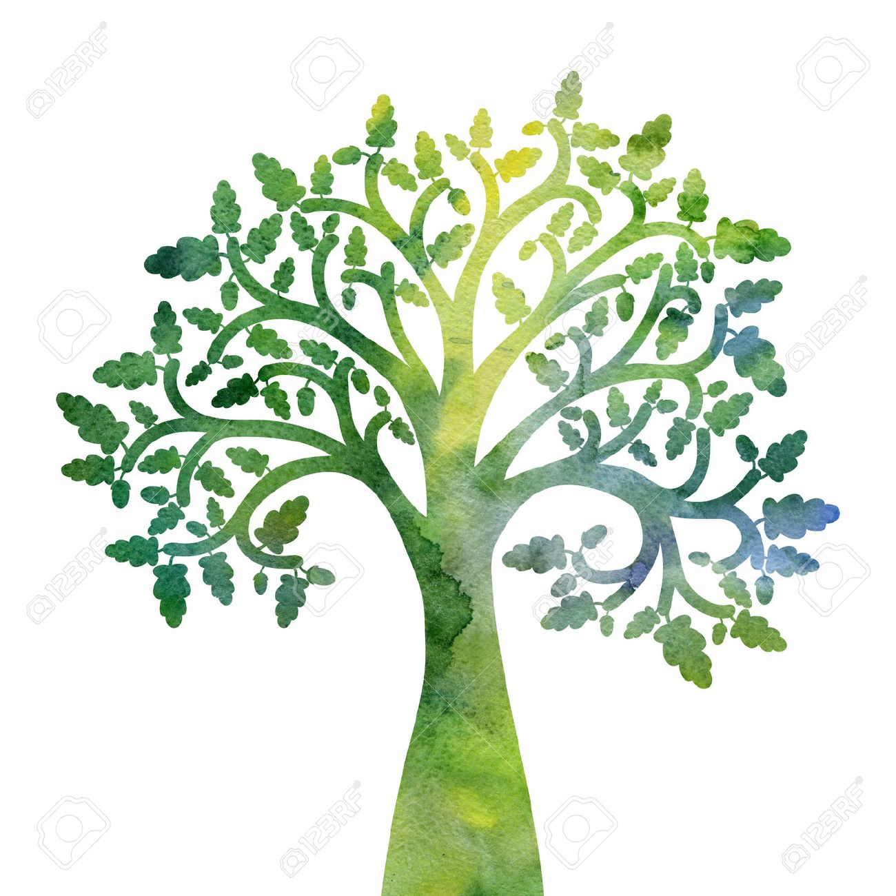 1300x1300 Silhouette Of Oak Tree With Leaves Drawing In Watercolor, Hand