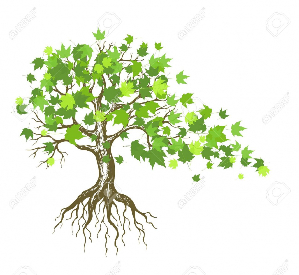 1024x940 Tree With Roots Drawing