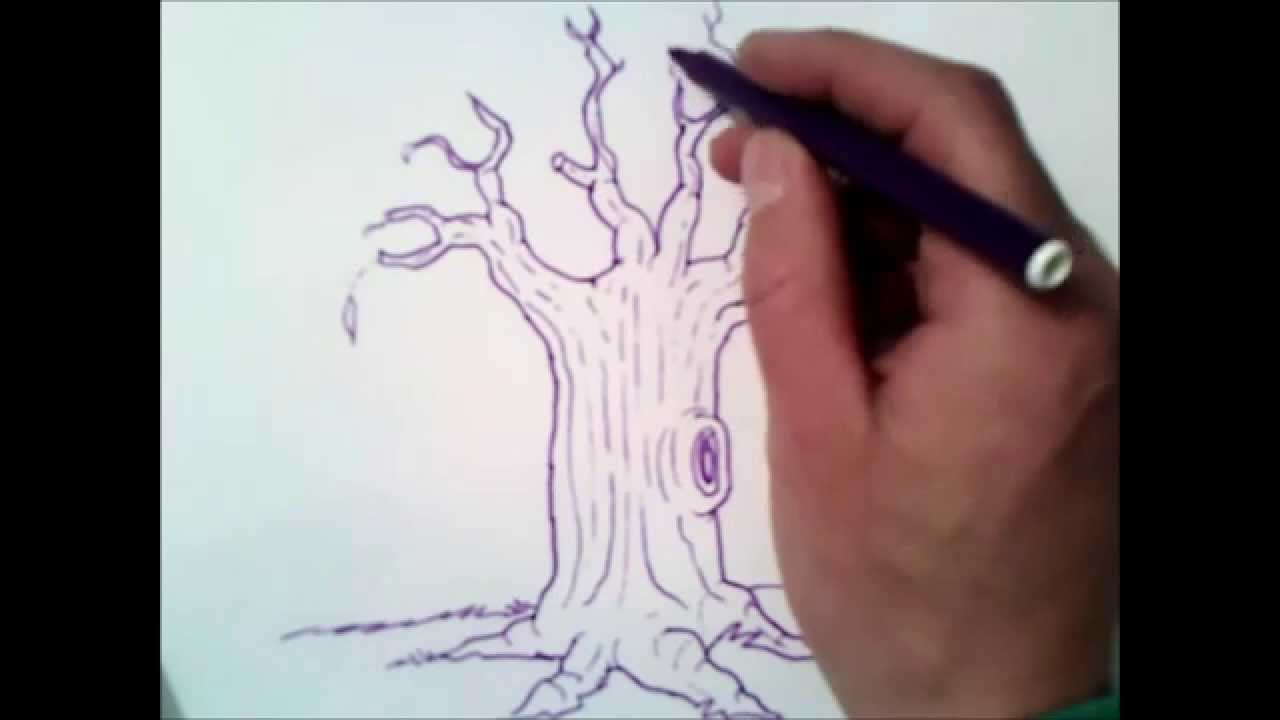 1280x720 How To Draw A Tree Without Leaves How To Draw A Tree Without