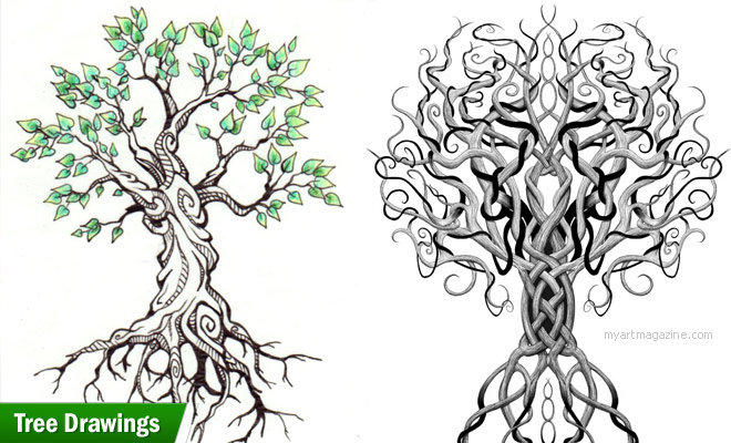660x400 25 Beautiful Tree Drawing Examples From Around The World