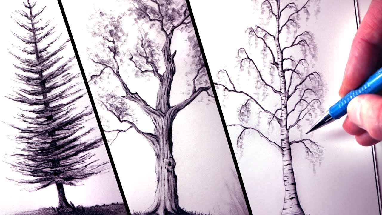 1280x720 How To Draw Trees