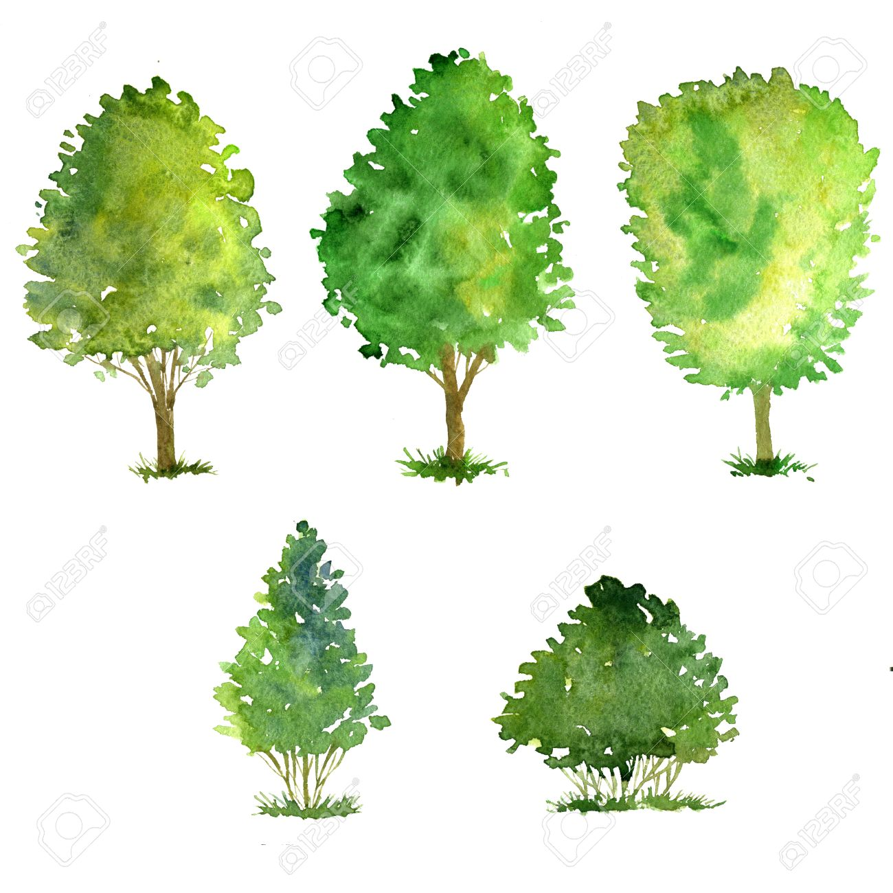1300x1300 Set Of Trees Drawing By Watercolor, Bushes And Decidious, Green