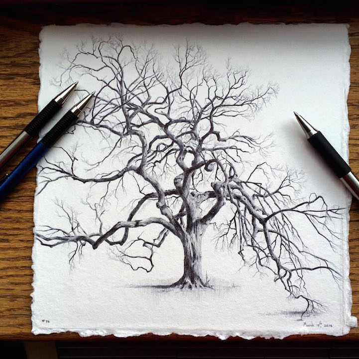 721x721 Artist Reflects On Life During Pregnancy By Drawing Trees
