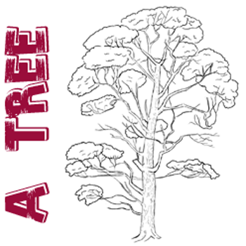 350x350 How To Draw Trees