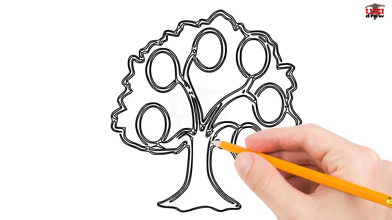 1280x720 How To Draw A Family Tree Step By Step Easy For Beginnerskids
