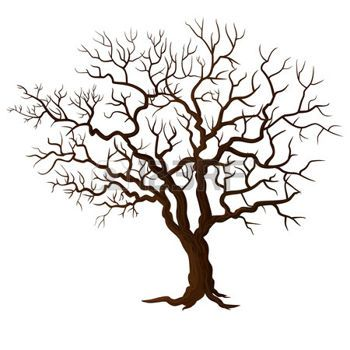 350x350 Tree Life Tree Without Leaves Isolated On White Home Decore