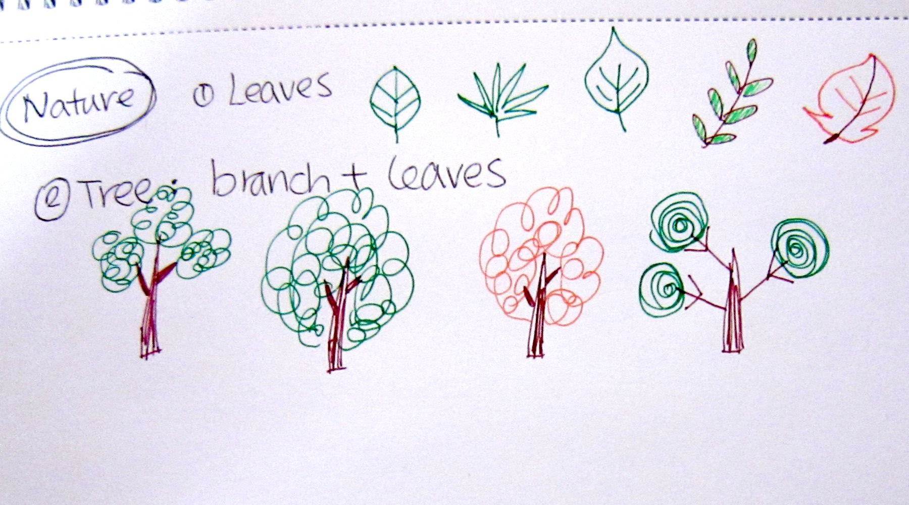 1800x1000 How To Draw Leaves And Trees