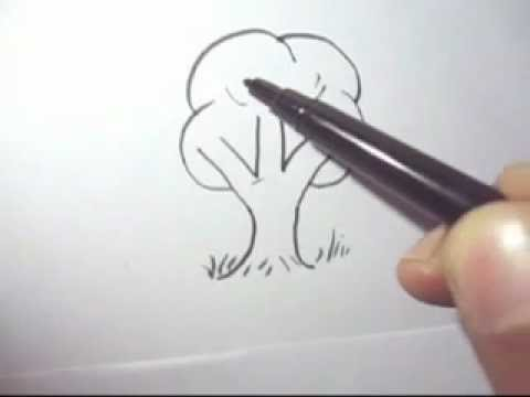 480x360 How To Draw A Tree Fast And Simple Steps