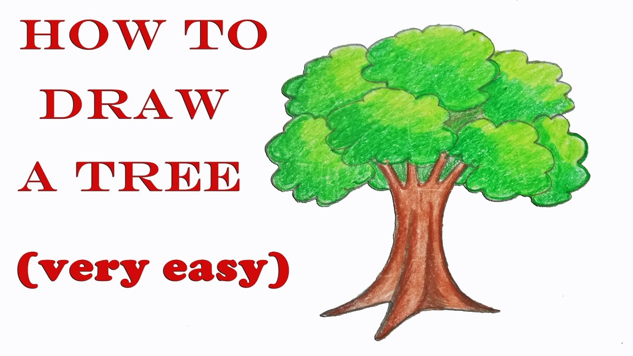 1280x720 How To Draw A Tree Step By Step ( Very Easy)