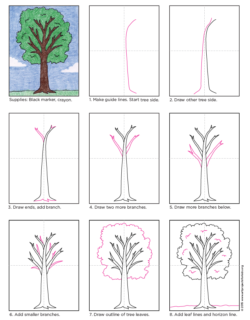 865x1106 How To Draw A Tree