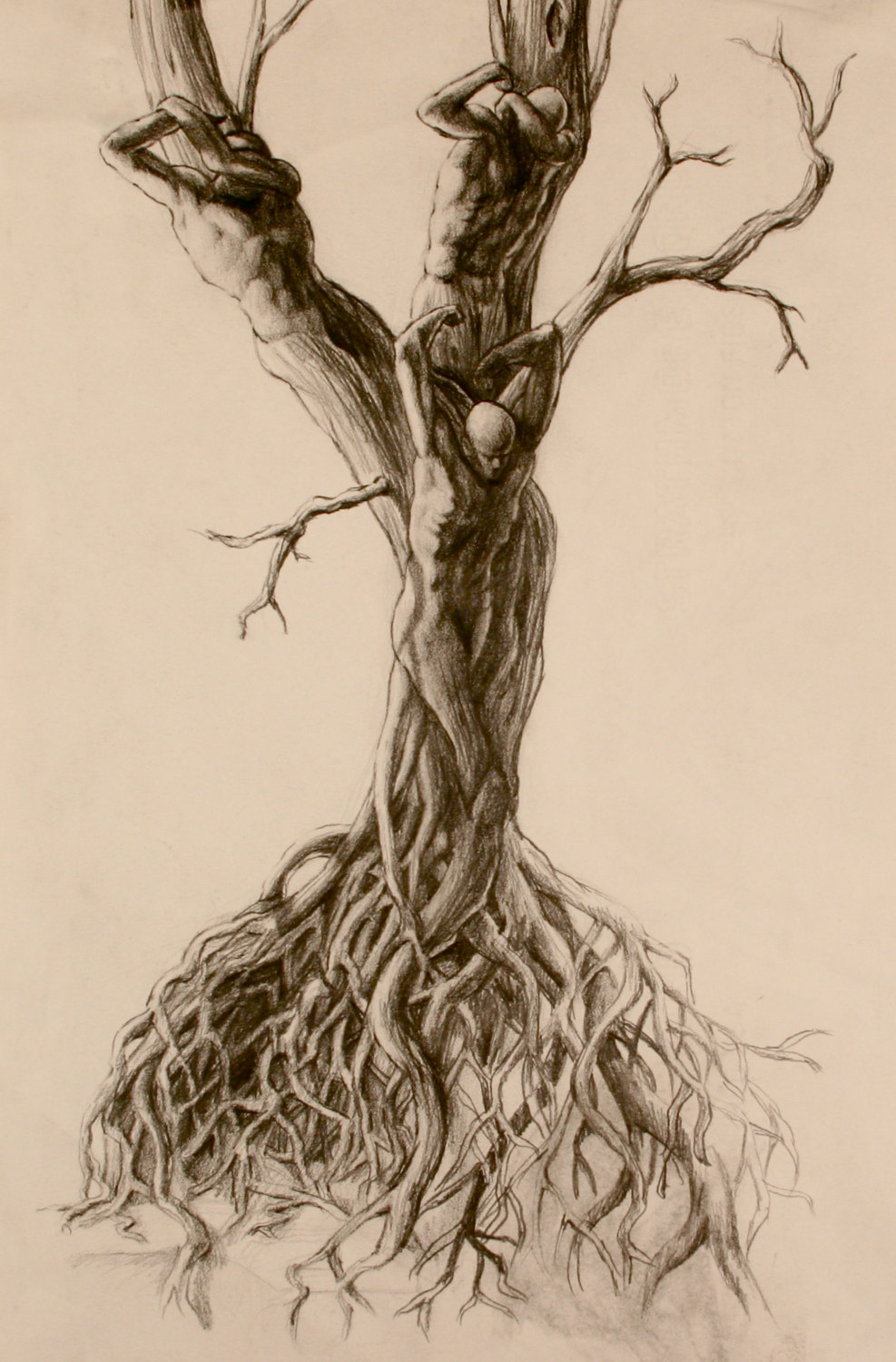 987x1500 Tree People Figure Stretching Waking In The Sun Twisted Roots