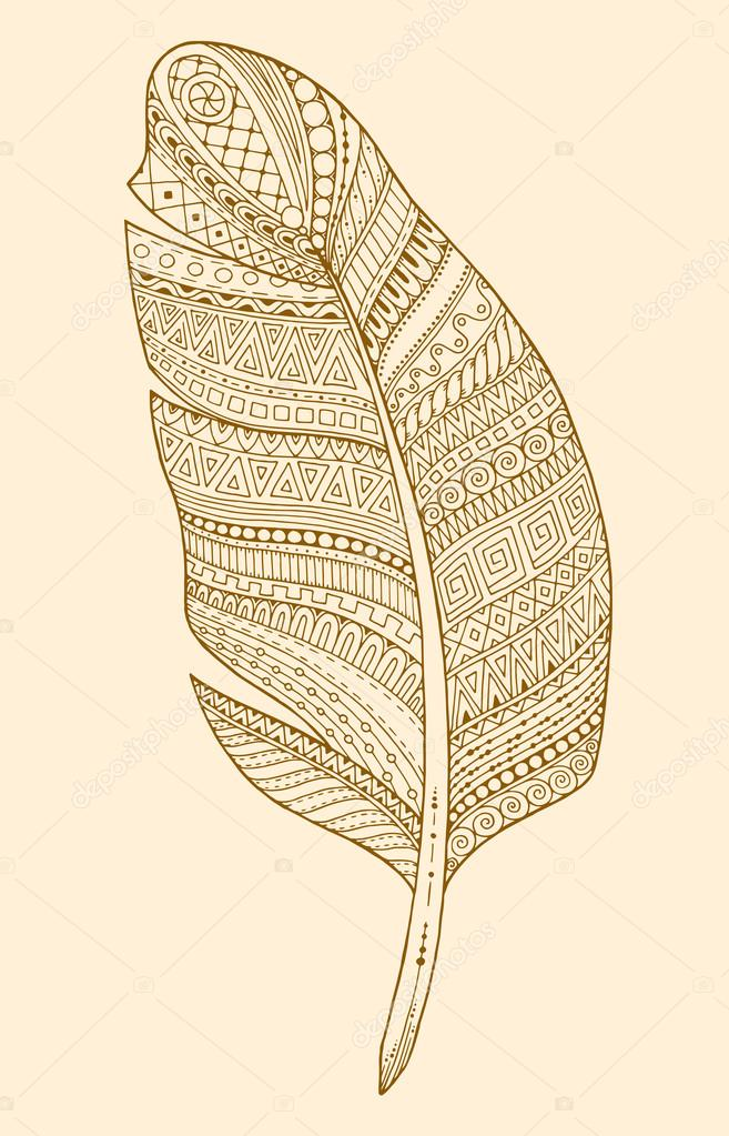 657x1023 Artistically Drawn, Stylized, Vector Feather On A White Background