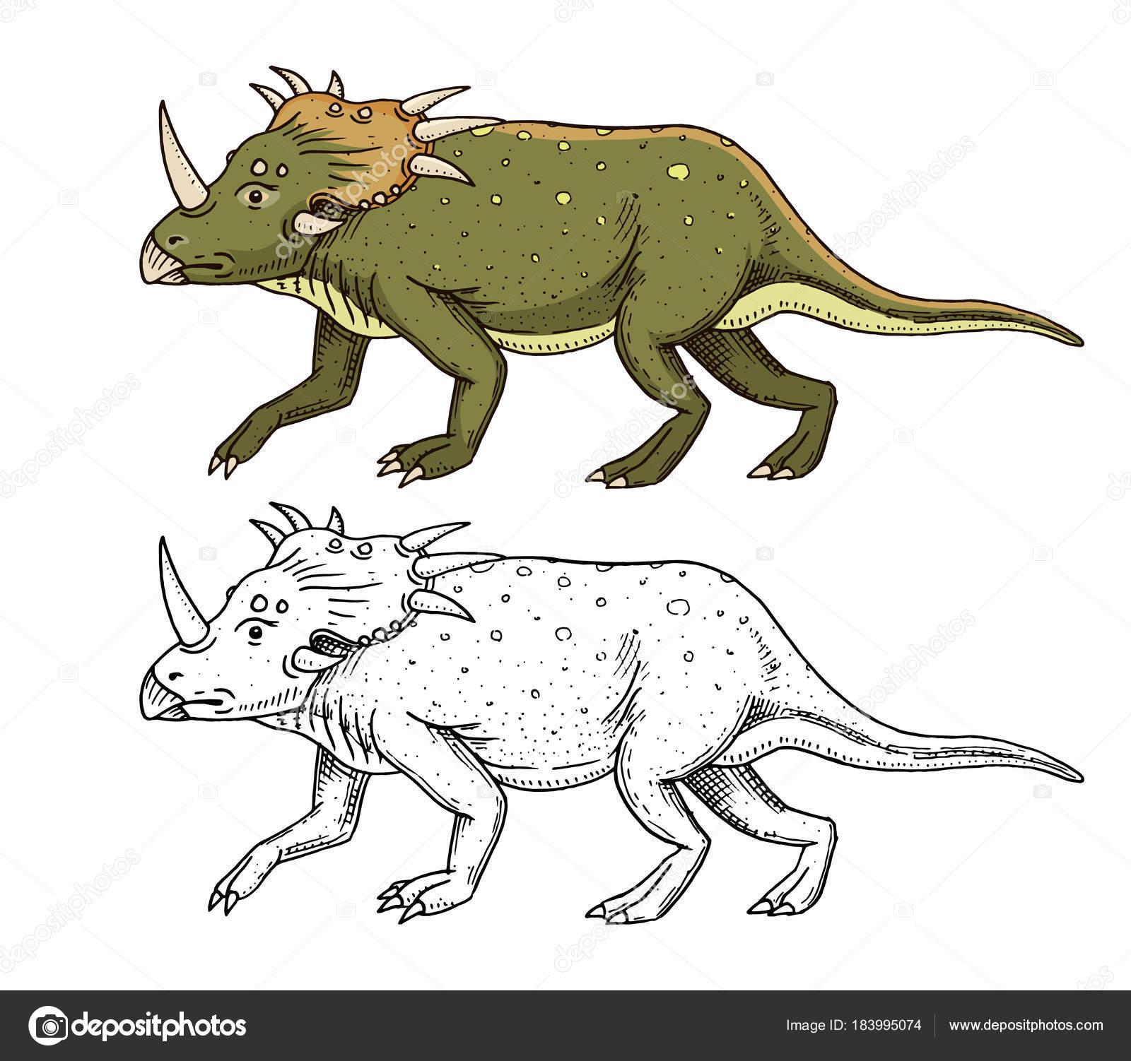 1600x1502 Dinosaur Triceratops, Skeletons, Fossils. Prehistoric Reptiles