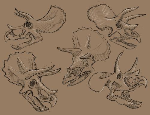 500x386 John Guy's Animated Experience How To Draw Dinosaurs