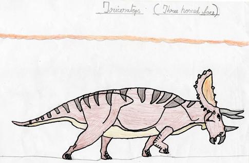 485x317 M. V. Eashwar Sent Us In A Super Drawing Of Triceratops