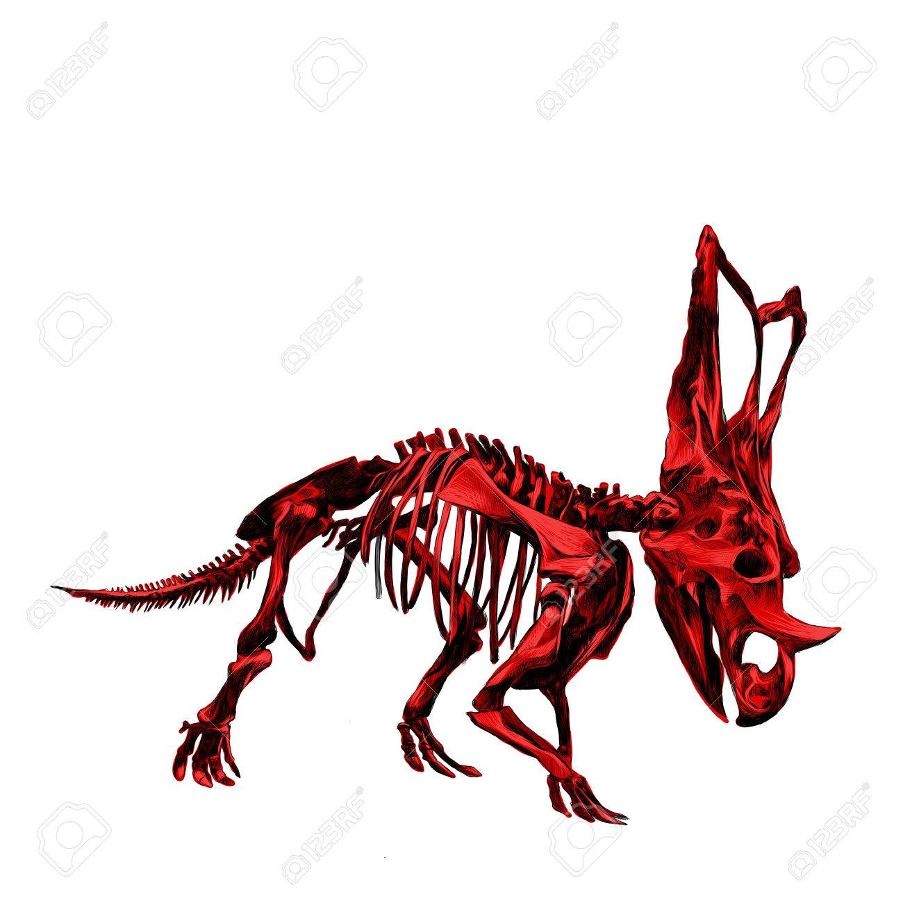 1300x1300 The Skeleton Of The Red Dinosaur Triceratops, Colored Drawing