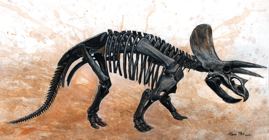 900x470 Triceratops Skeleton Painting By Harm Plat