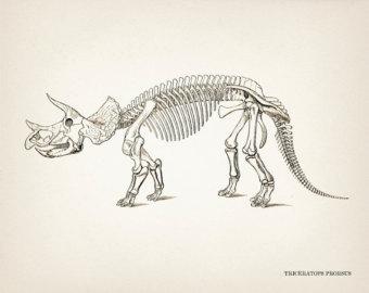 340x270 Triceratops Art Etsy