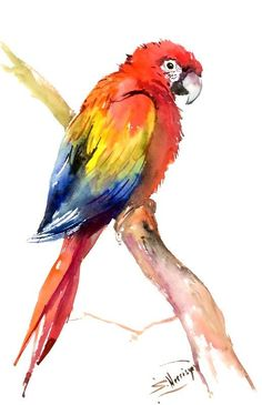 236x365 40 Beautiful Bird Drawings And Art Works For Your Inspiration