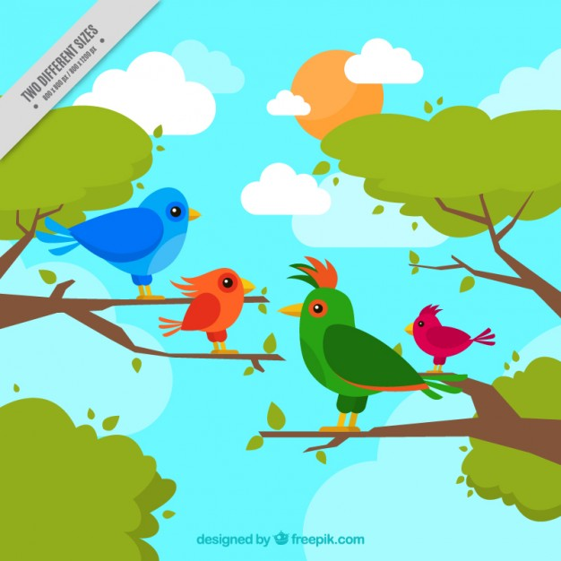 626x626 Hand Drawing Tropical Birds Background Vector Free Download