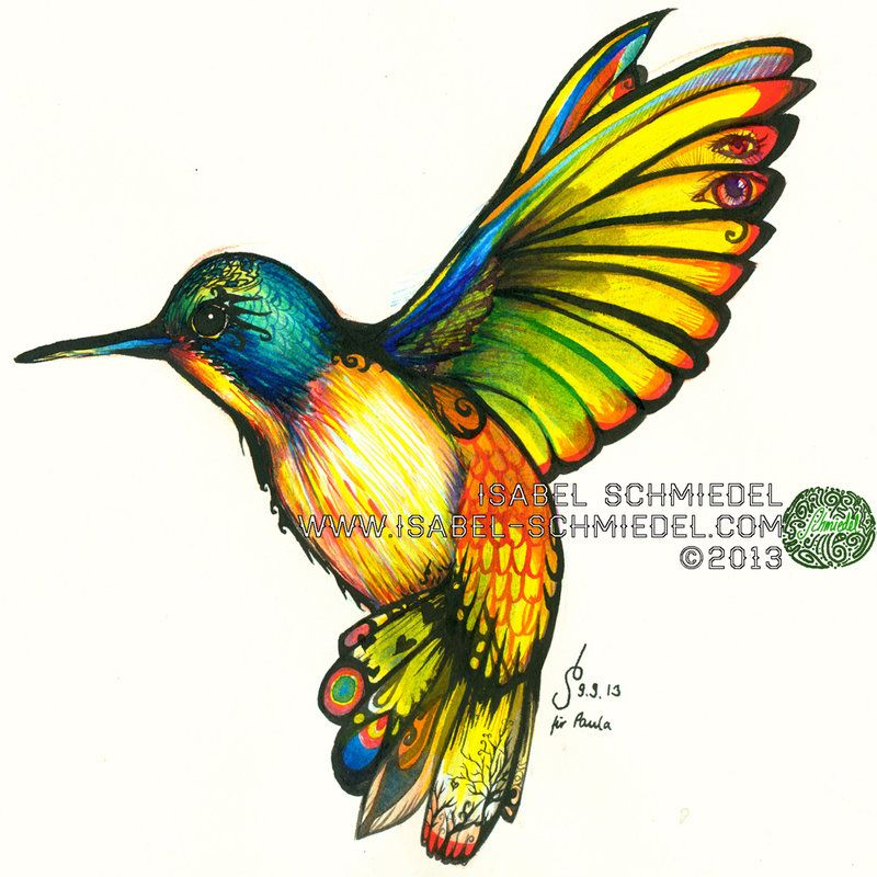 800x800 Ink A4 Summer 2013 A Humming Bird Brimming With The Tropical