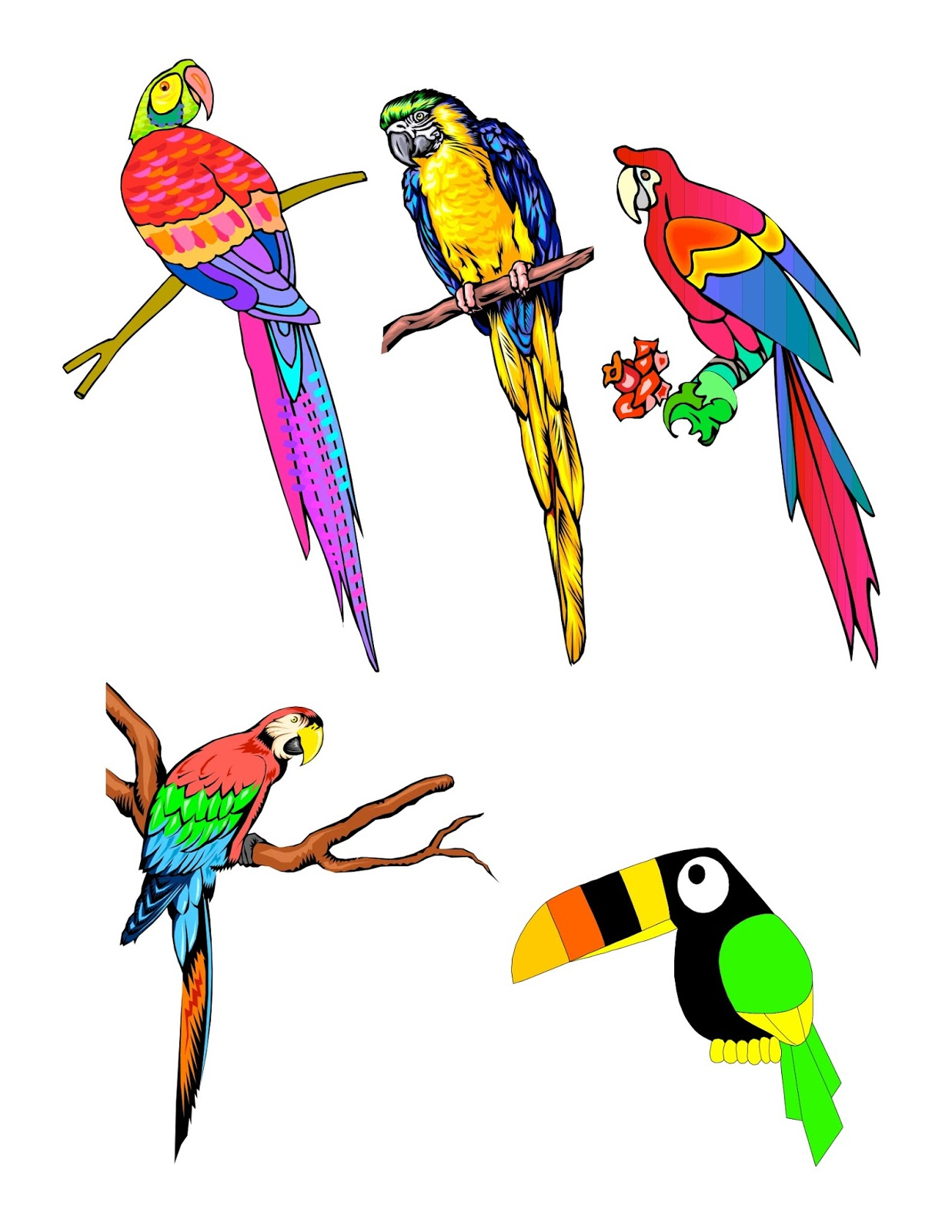 1237x1600 No Corner Suns No M Birds! Tropical Bird Clip Art Page.