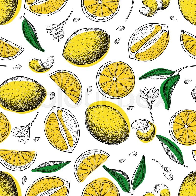 800x800 Lemon Vector Seamless Pattern. Drawing Lemon Colorful Background