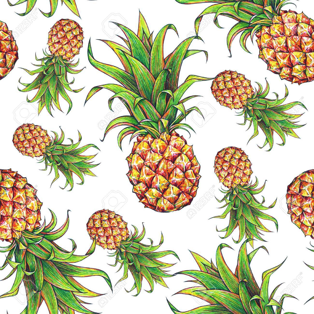 1300x1300 Pineapple On A White Background. Color Drawing Markers. Tropical