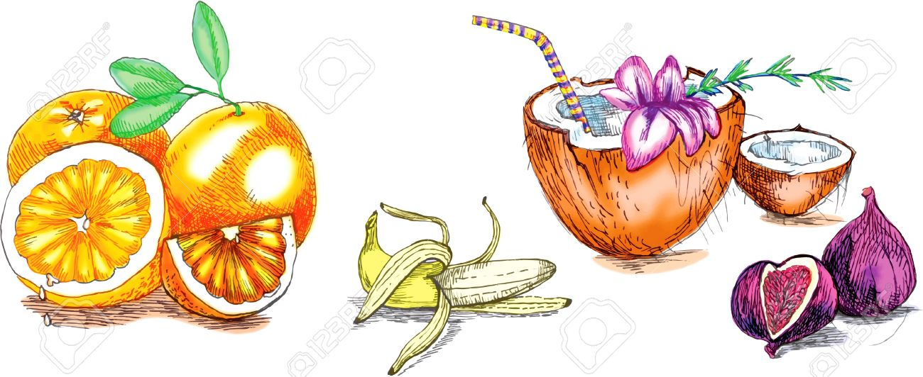1300x532 Tropical Fruit, Hand Drawing Royalty Free Cliparts, Vectors,