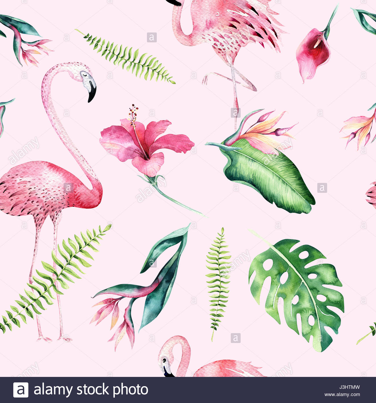 1300x1390 Tropical Isolated Seamless Pattern With Flamingo. Watercolor