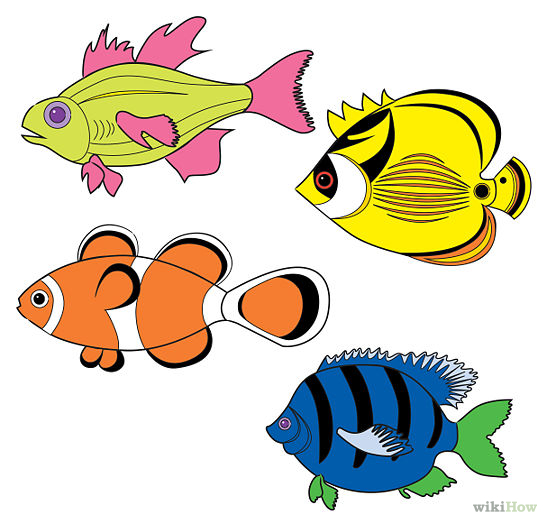 547x524 Draw Tropical Fishes Tropical Fish And Fish