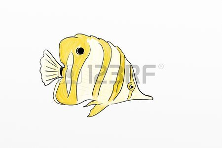 450x300 Yellow Tropical Fish Drawing Stock Photo, Picture And Royalty Free