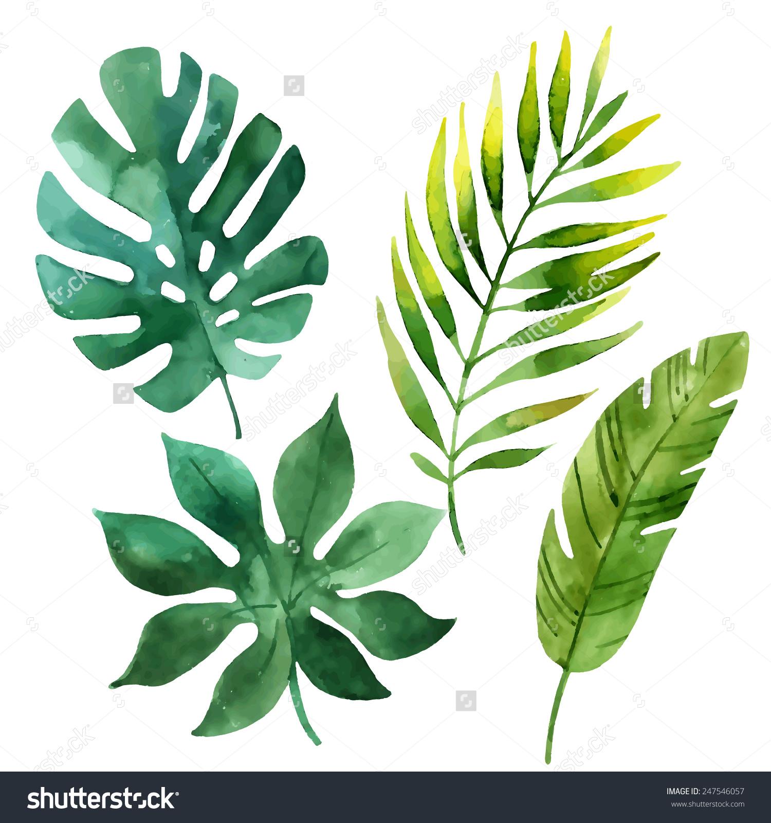 Tropical Leaf Drawing at GetDrawings | Free download