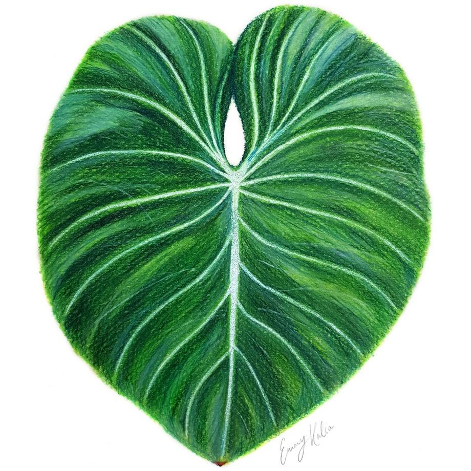 920x920 Tropical Leaf Pastel Drawing, An Art Print By Emmy Kalia