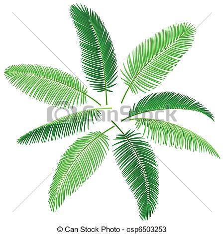 450x470 Tropical Palm Trees