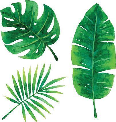 405x424 Vector Illustration Of Tropical Plants Leaf. Art Scrapbooking