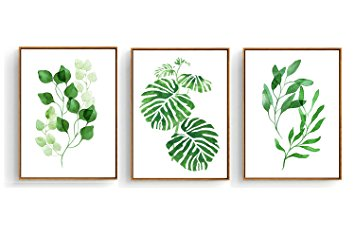 355x237 Hepix Framed Canvas Wall Art Tropical Leaves Drawing