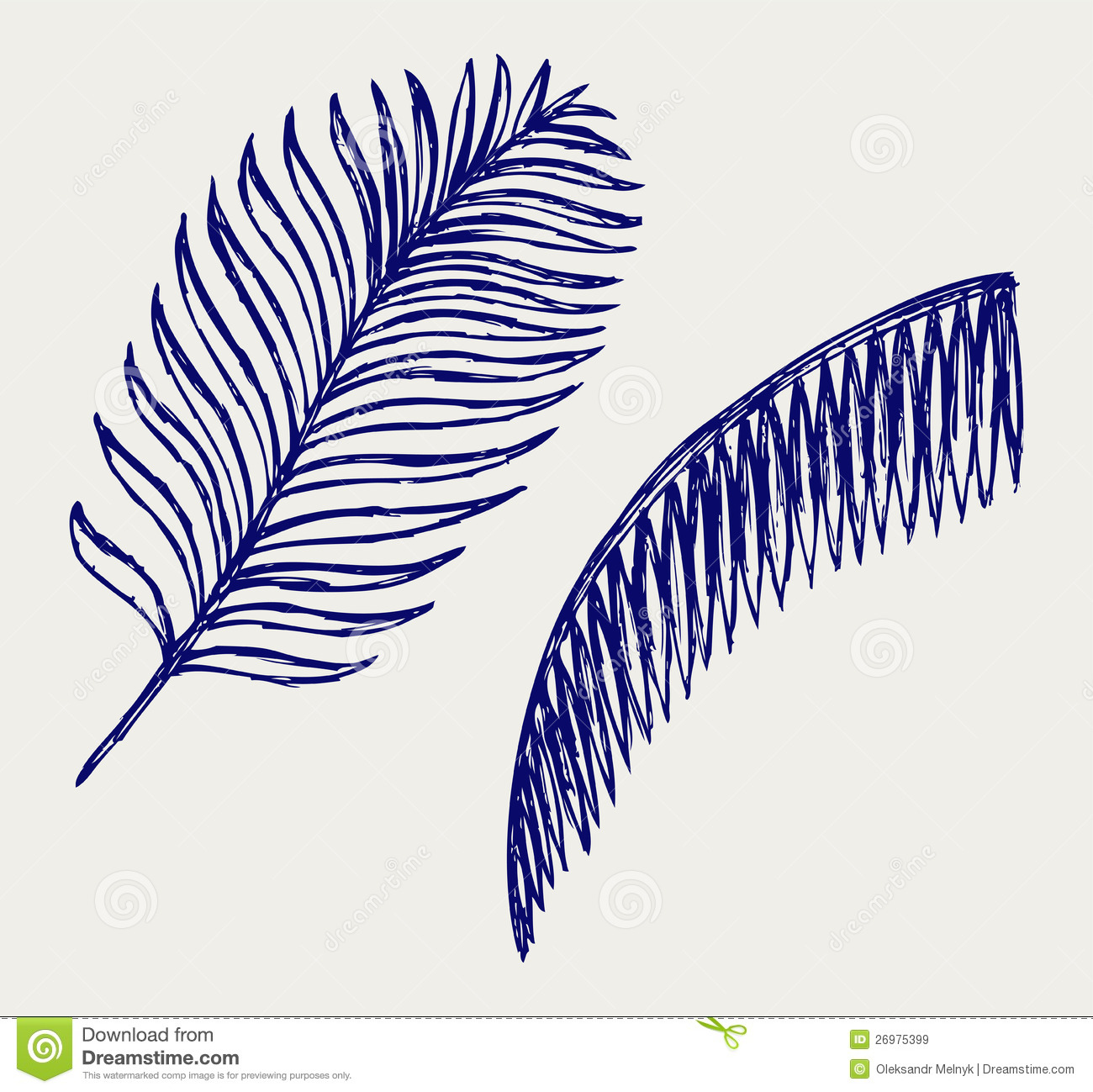 1300x1299 Hand Drawn Palm Tree Leaves Background 23 2147543672drawing Palm