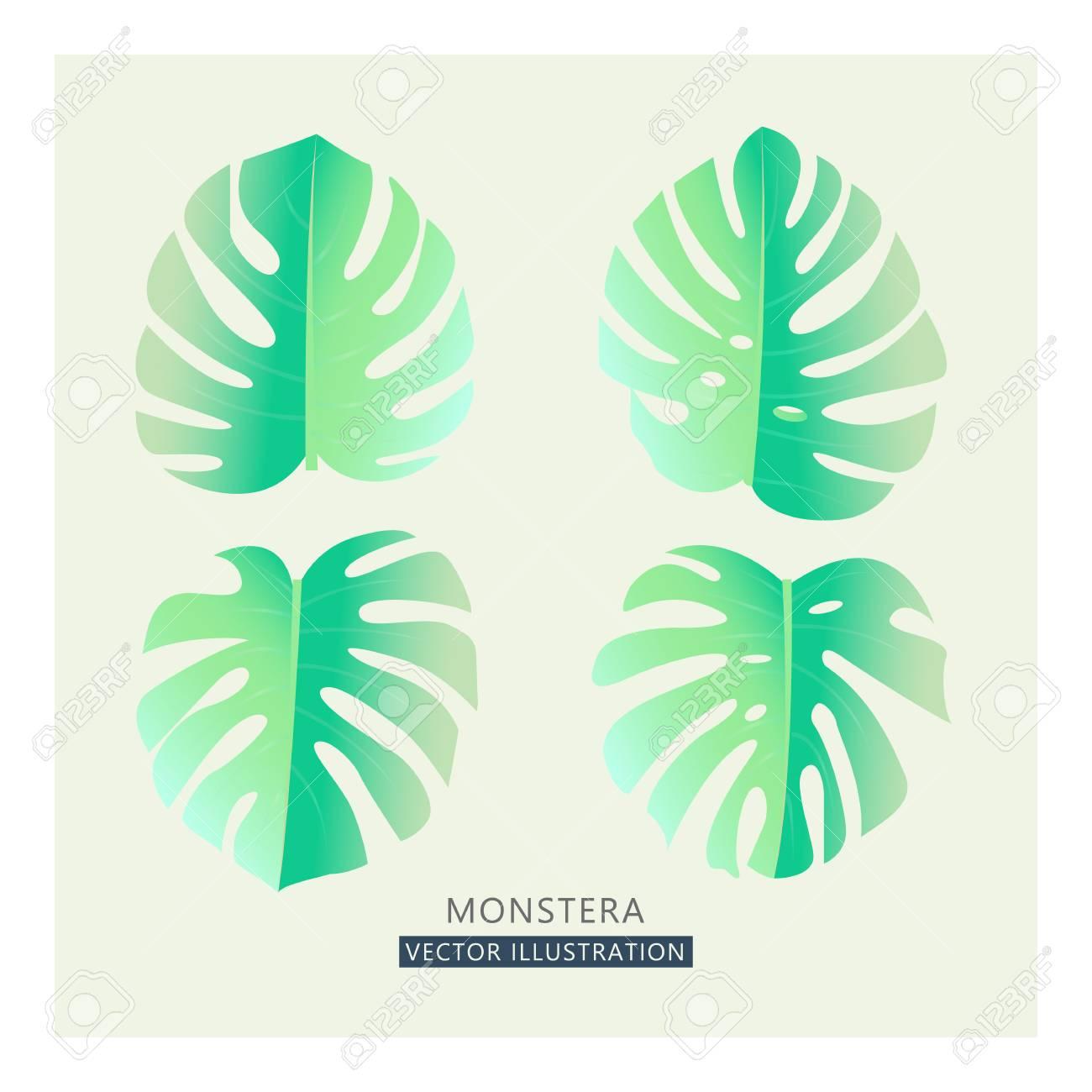 1300x1300 Vector Tropical Palm Leaves. Split Leaf Drawing In Tender Pastel