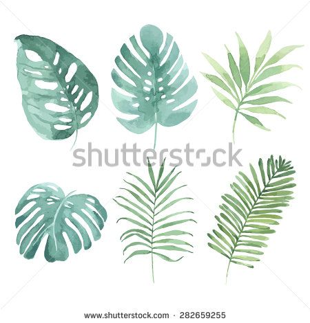 450x470 Watercolor Set With Tropical Leaves. Vector Element For Your