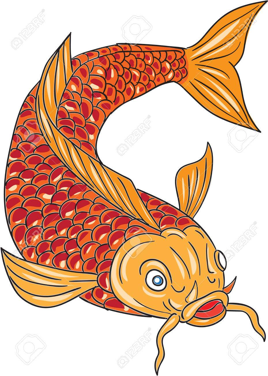 Magnificent Fish Color Page Photo - Drawing Coloring - androidharga.info