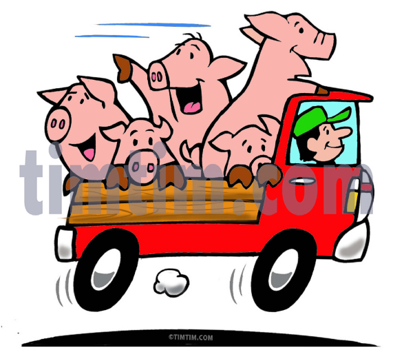 571x524 Free Drawing Of A Truck Full Of Pigs From The Category Cars Trucks