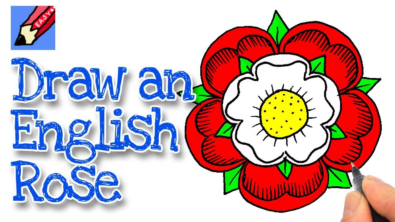 Tudor Rose Drawing at GetDrawings.com   Free for personal use Tudor ...