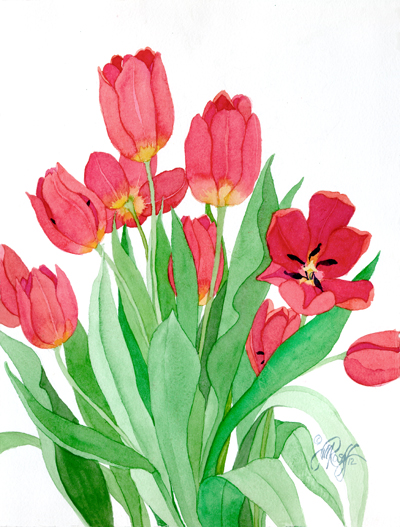 tulip drawing at getdrawings com free for personal use tulip