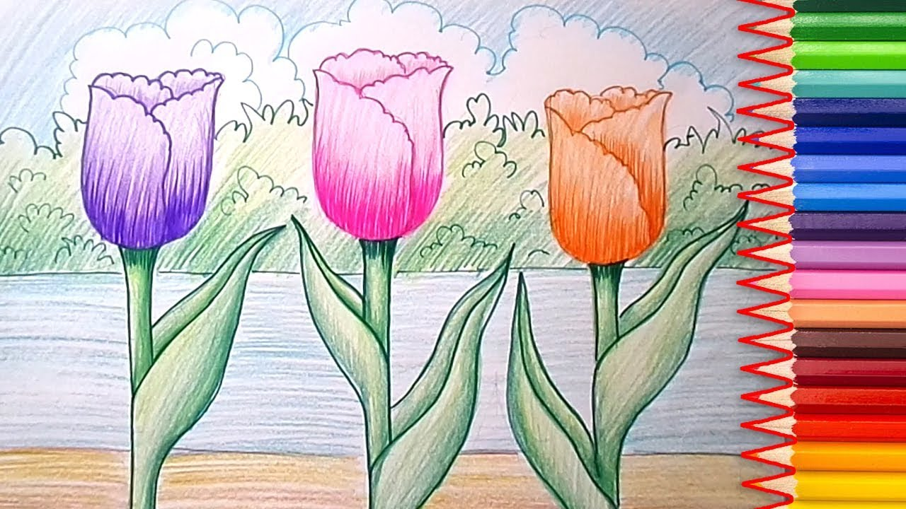1280x720 How To Draw A Tulip Flowers Step By Step Learn Easy Drawing