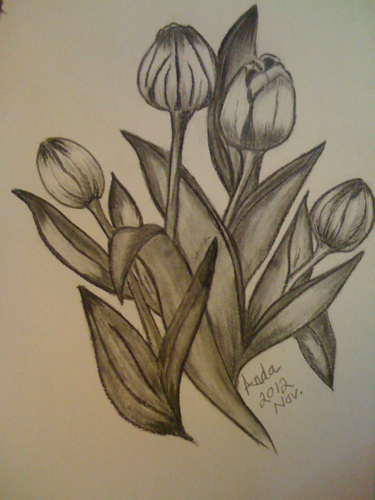 736x981 7 best my drawing images on pinterest a3 art designs and art