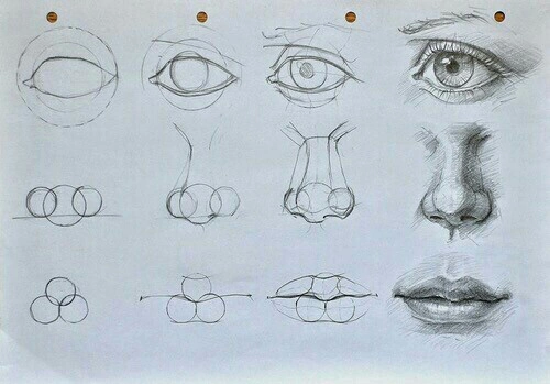 500x349 how to draw noses tumblr