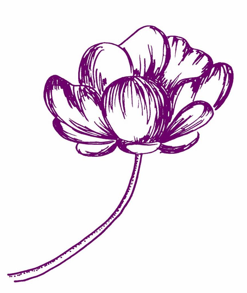862x1024 Cute Flower Drawings Tumblr On