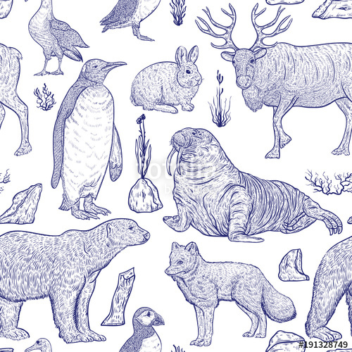 500x500 Seamless Pattern With Arctic Animals. Snowy Arctic Hare, Arctic