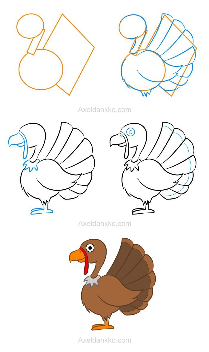 700x1175 Learning How To Draw A Turkey Is Quite Easy When You Have Access